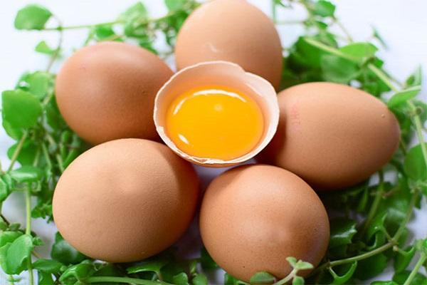 Thực phẩm giàu protein rất tốt cho sức khỏe